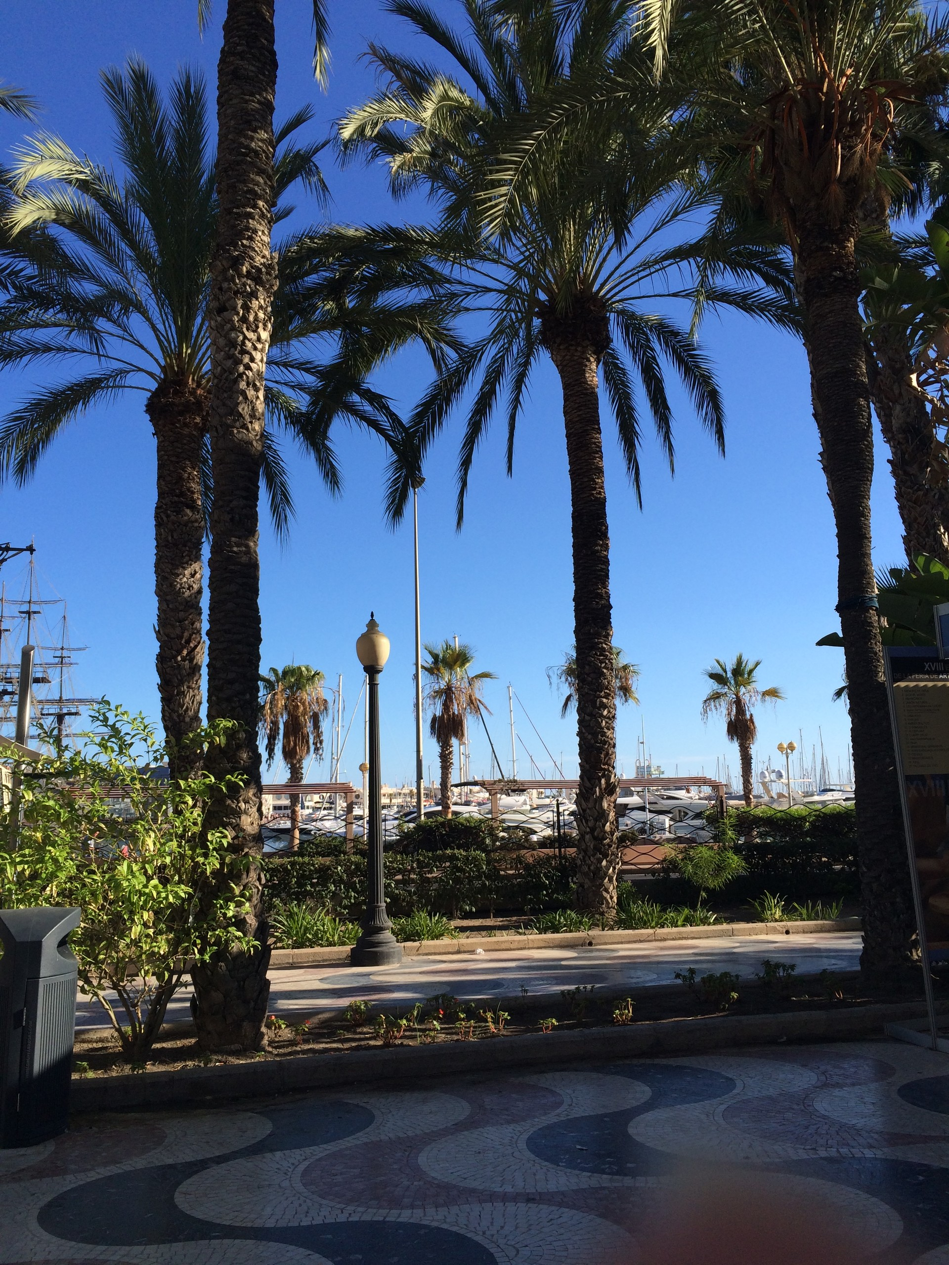 Pierwsze tygodnie w Alicante: niespodzianki i lekcje życia