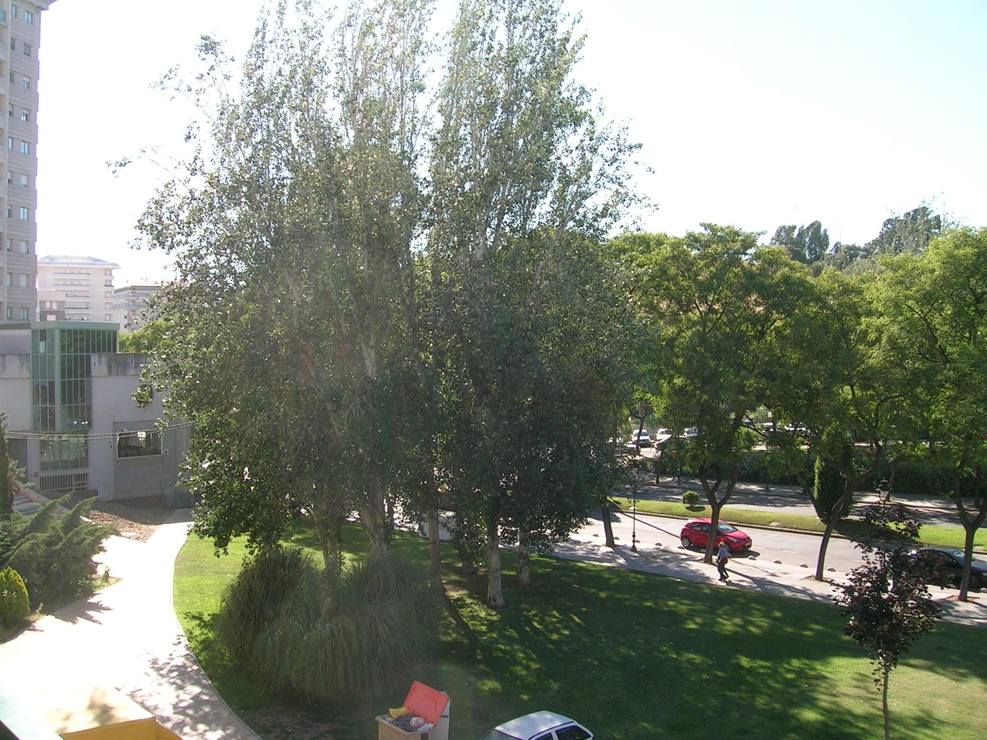 Piso compartido muy cerca del centro de Huelva