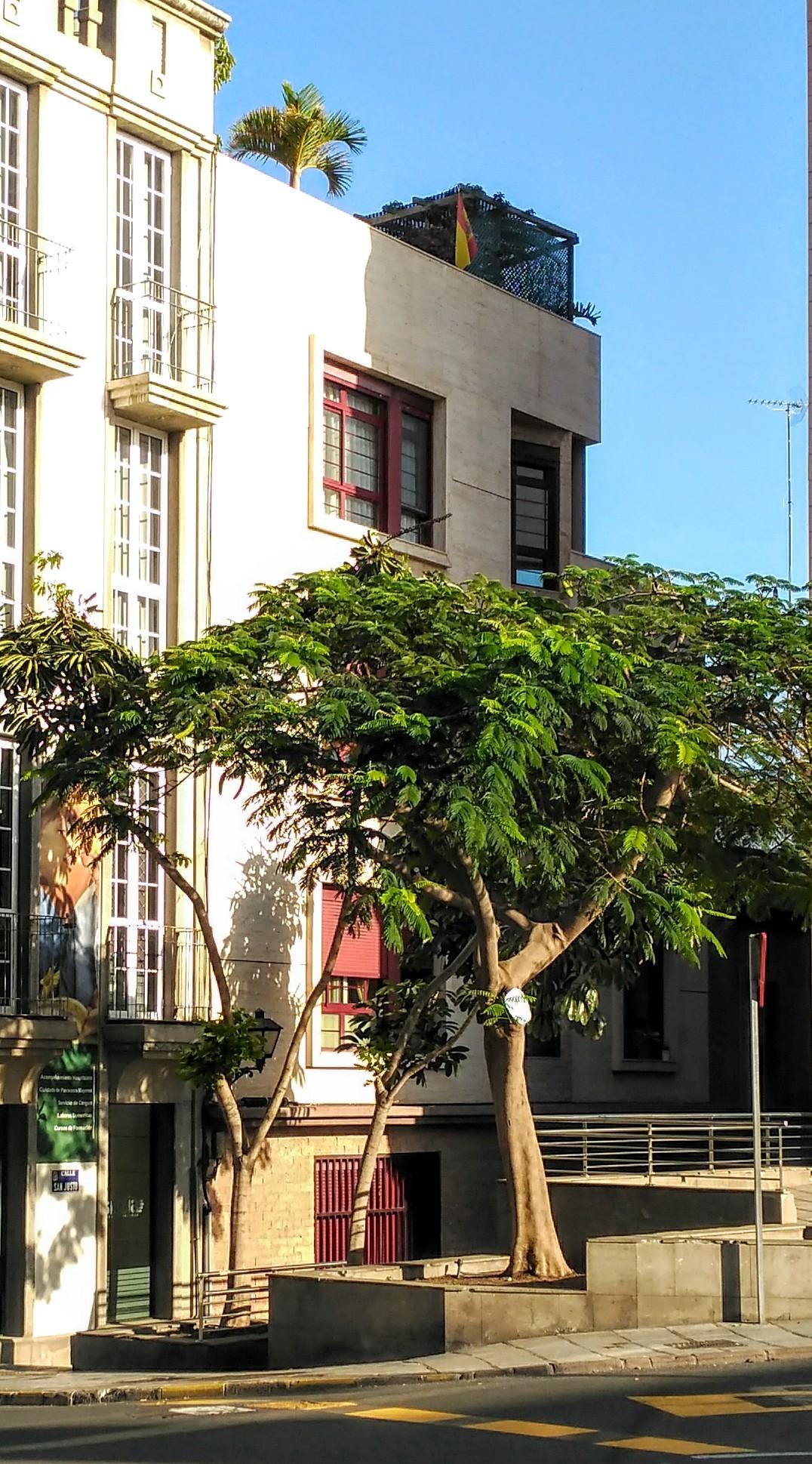 piso-luminoso-centro-ciudad-palmas-en-caso-antiguo-todos-servicios-cerca-c43bd1a607edc2a10e688b52ca9d8d8f