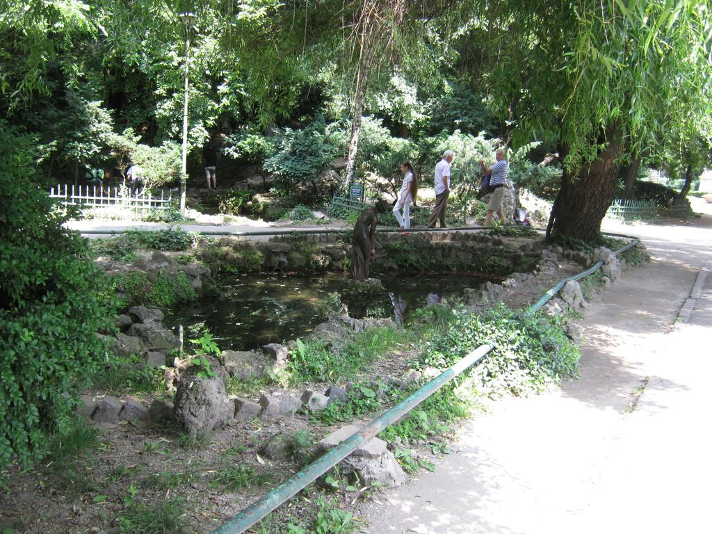 pure-nature-center-capital-romania-70085