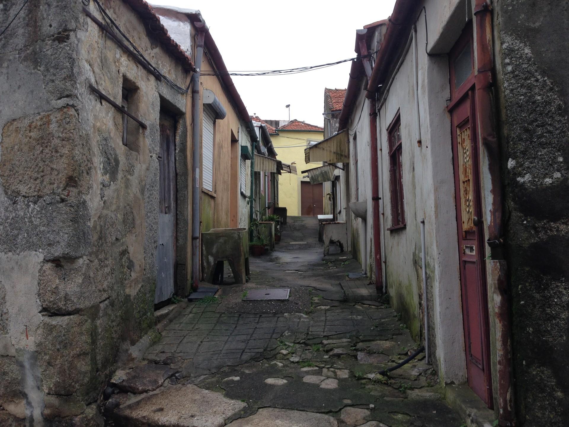 quattordici-cose-imparato-porto-citta-7b