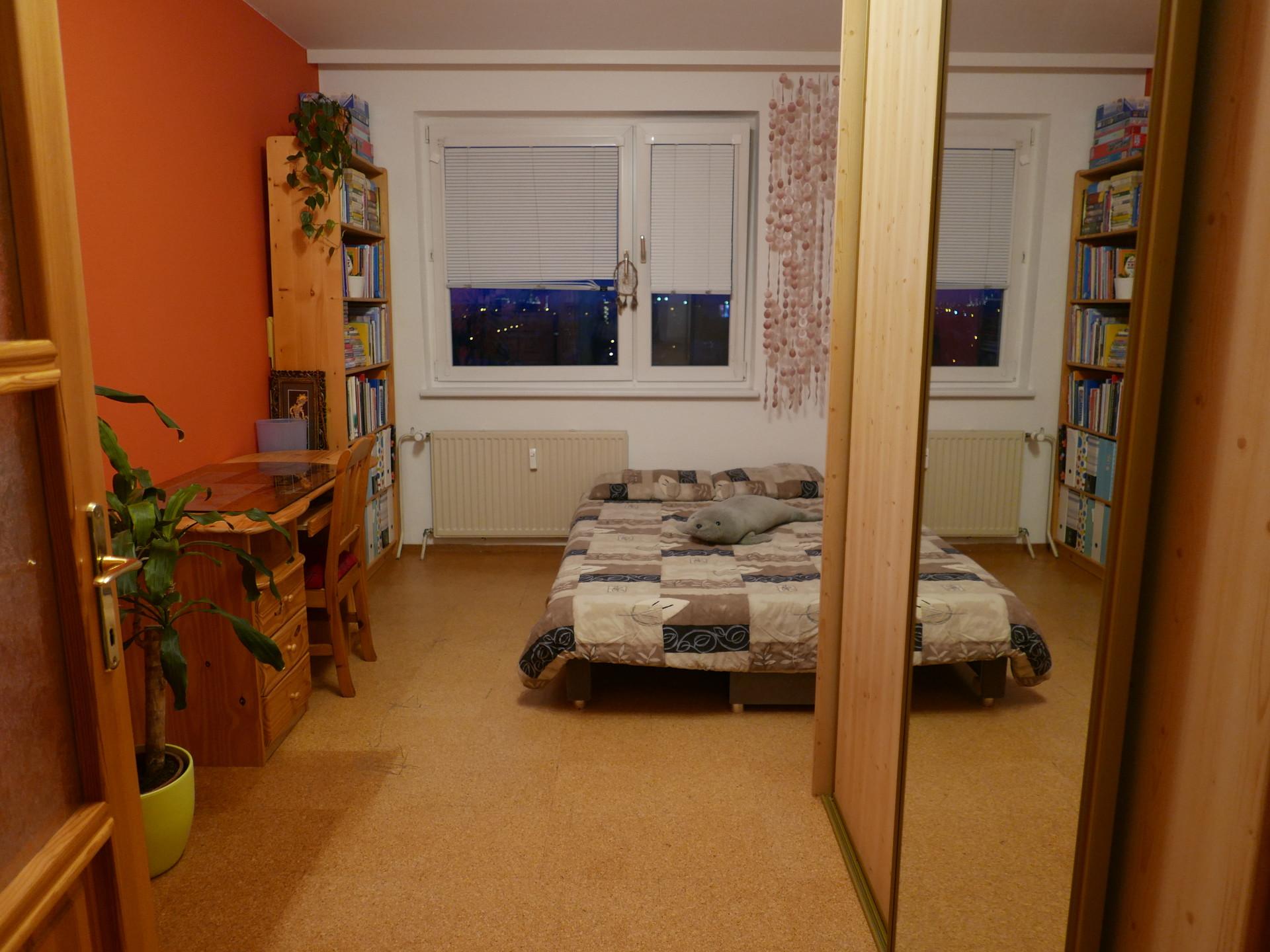 quiet-cozy-room-comes-cat-895c600c9f9b6c00f2e4060eadf06135