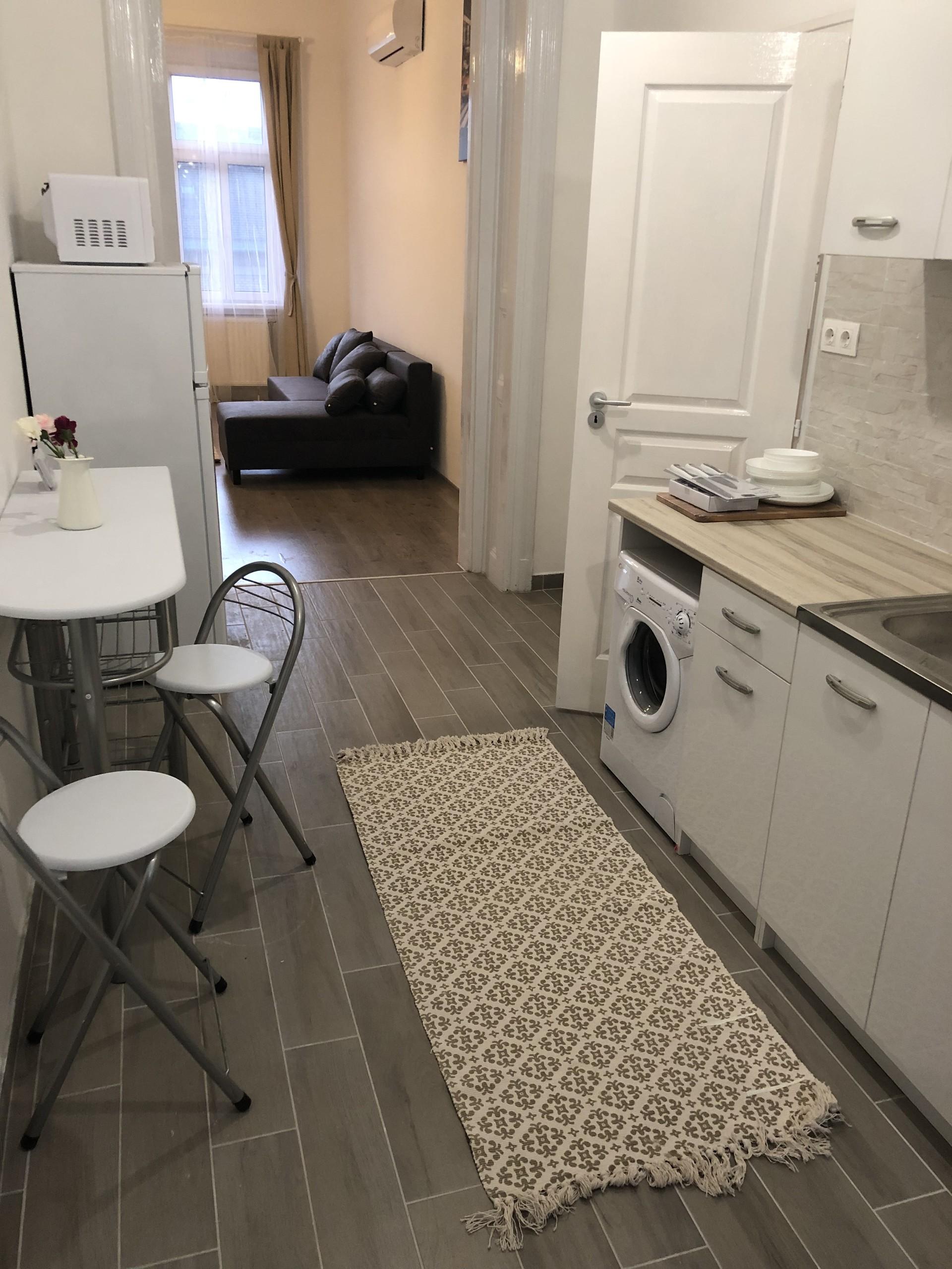 renewed-apt-3-rooms-2-bathrooms-central-badd49eb156dd6d0bcebc24915ae0420