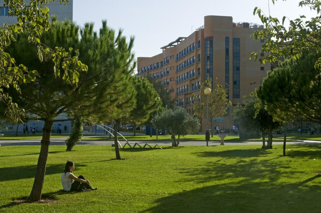 Universidad politecnica de valencia - 1 7