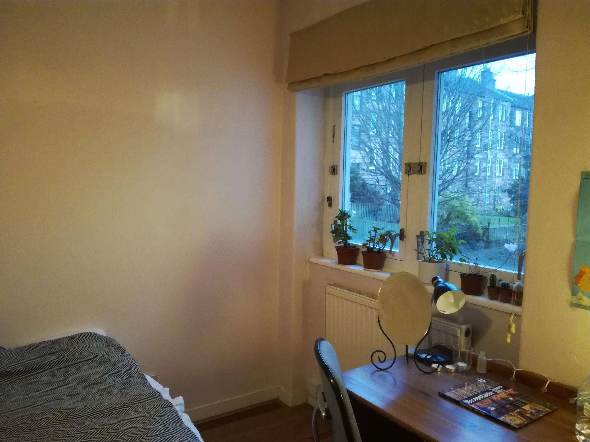 room-available-glasgow-west-end-3200fdaf8d1378279d1c4929ce7d6d96
