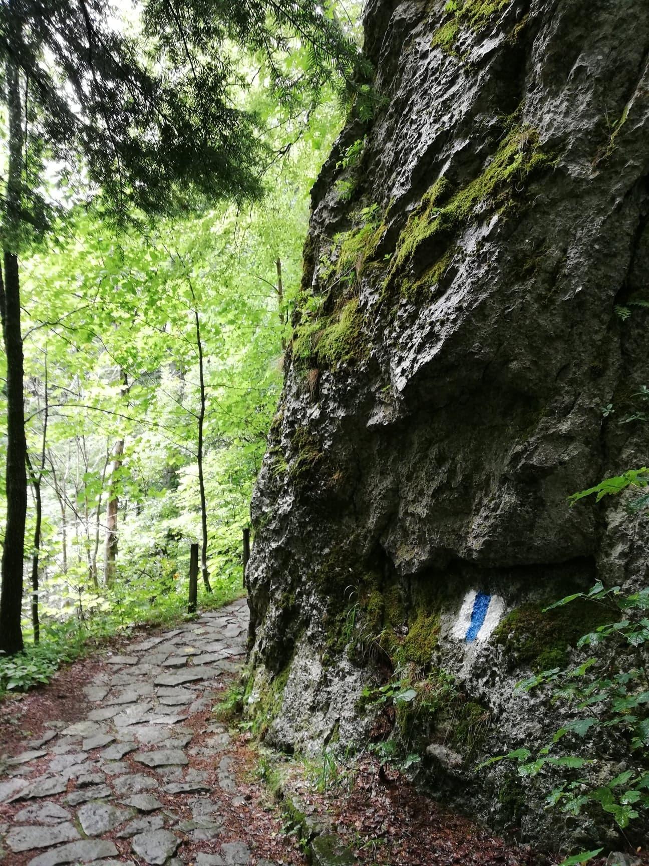sinaia-mountain-city-royal-residence-236