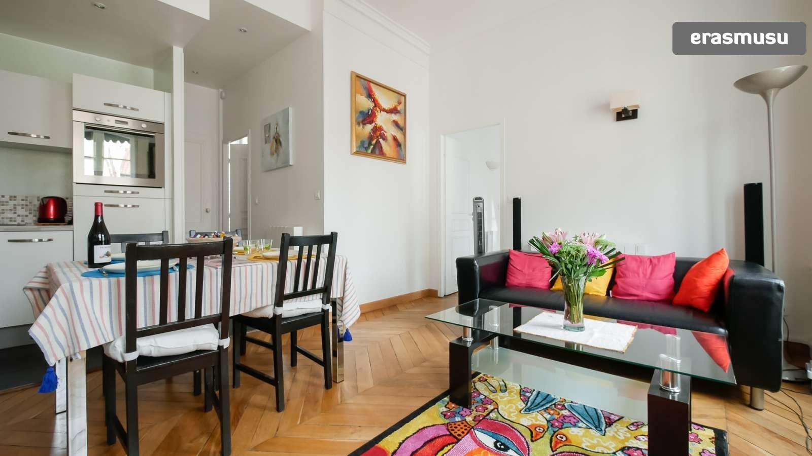 spacious-2-bedroom-apartment-rent-cordeliers-02d7d56819c78c8f825