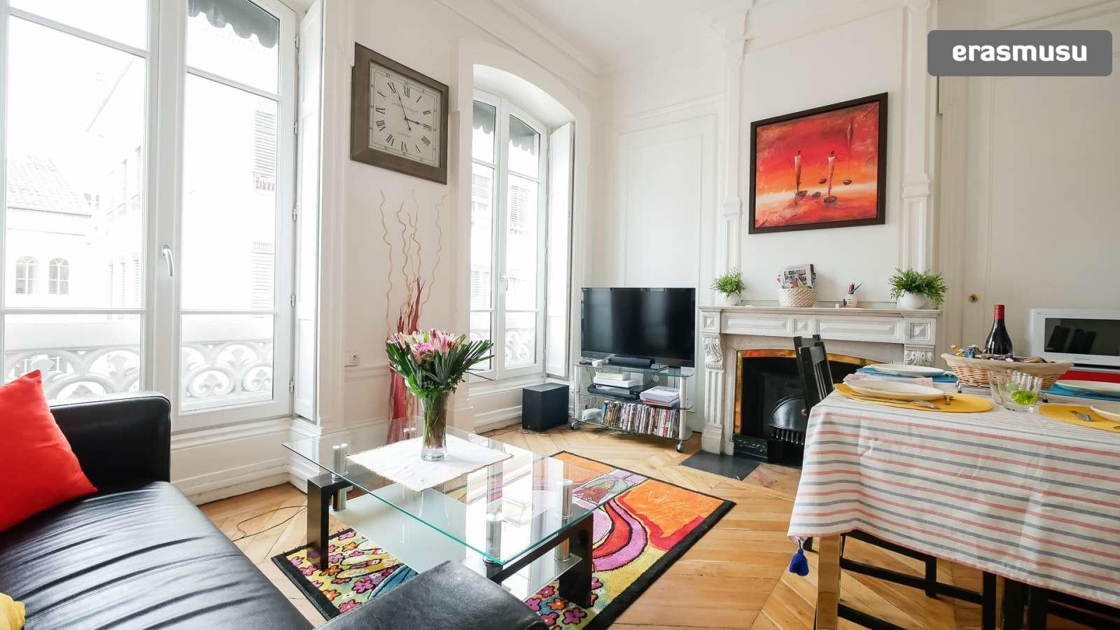 spacious-2-bedroom-apartment-rent-cordeliers-592e7d1f80aae930aa6