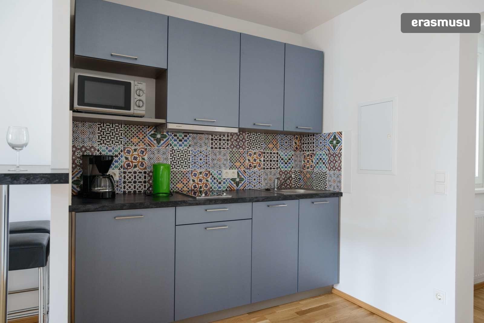 spacious-studio-apartment-rent-aspern-area-donaustadt-2790fda0d8