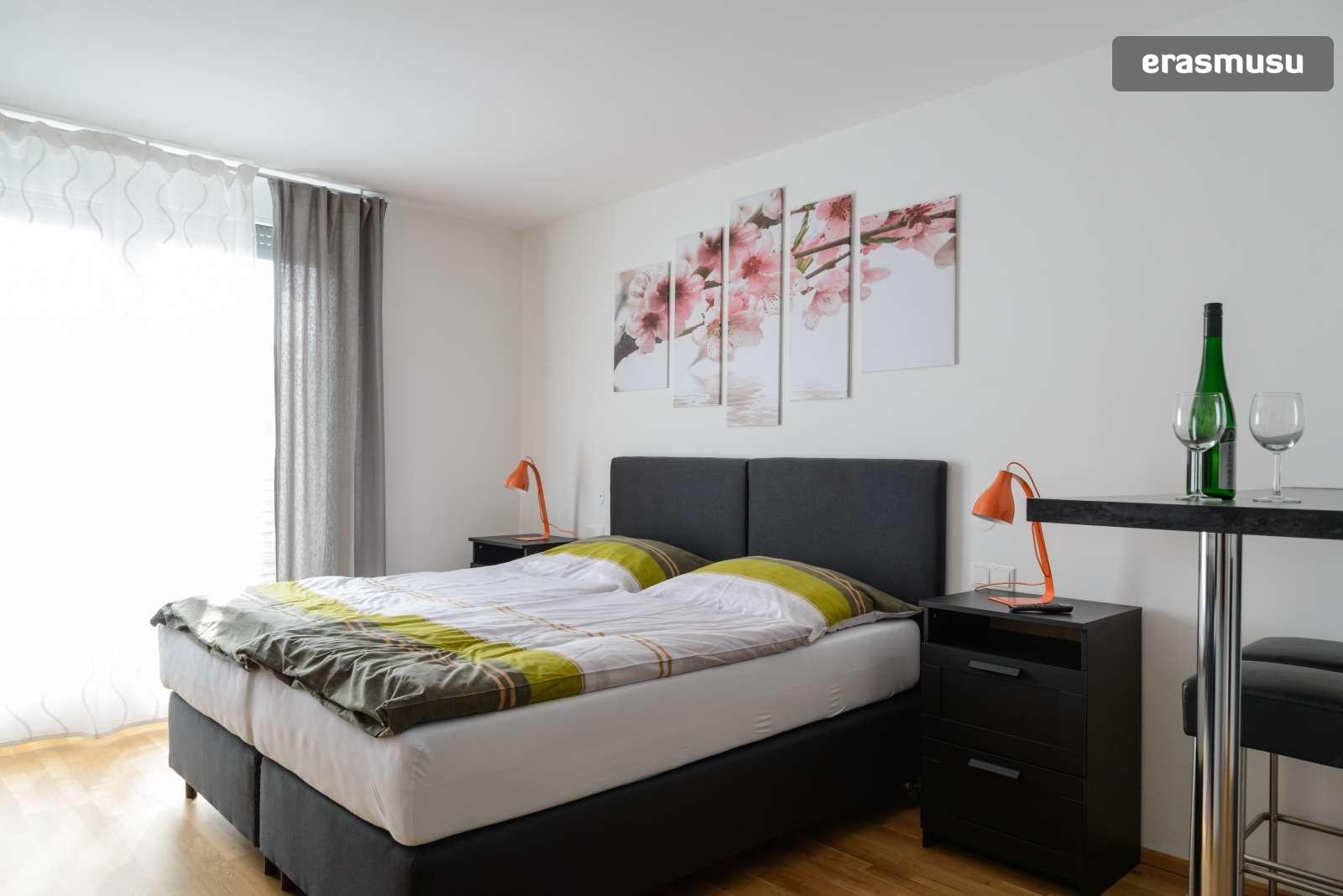 spacious-studio-apartment-rent-aspern-area-donaustadt-5896fcb9a0