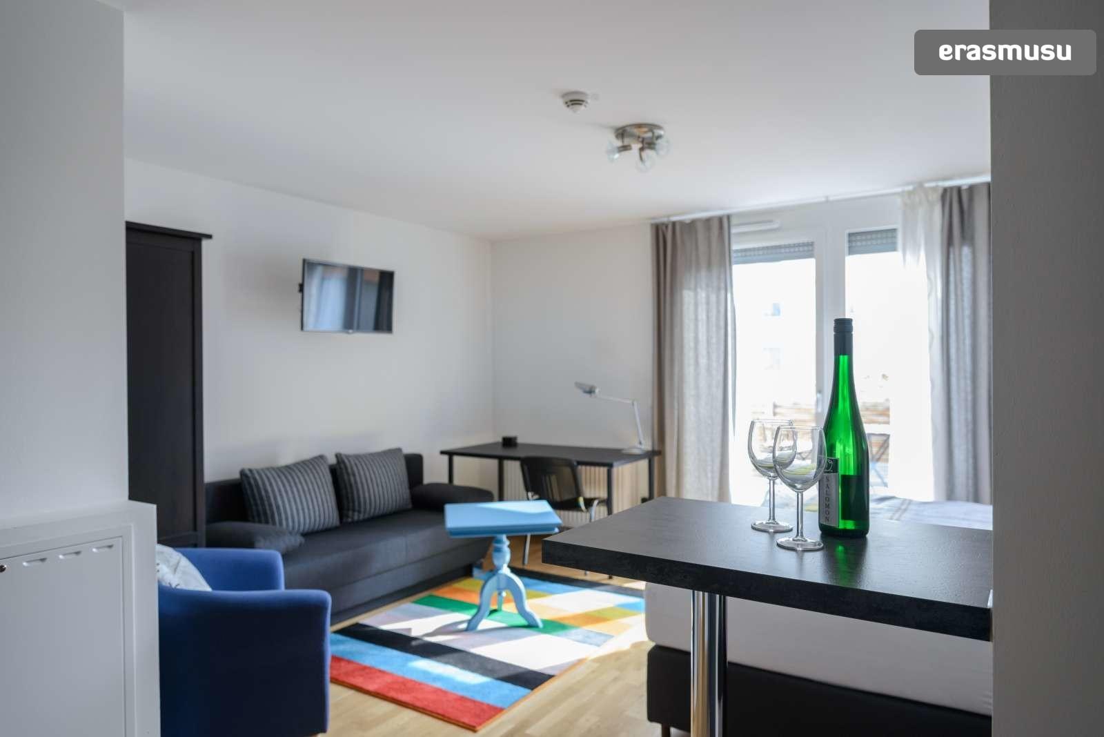 spacious-studio-apartment-rent-aspern-area-donaustadt-69e88c4740