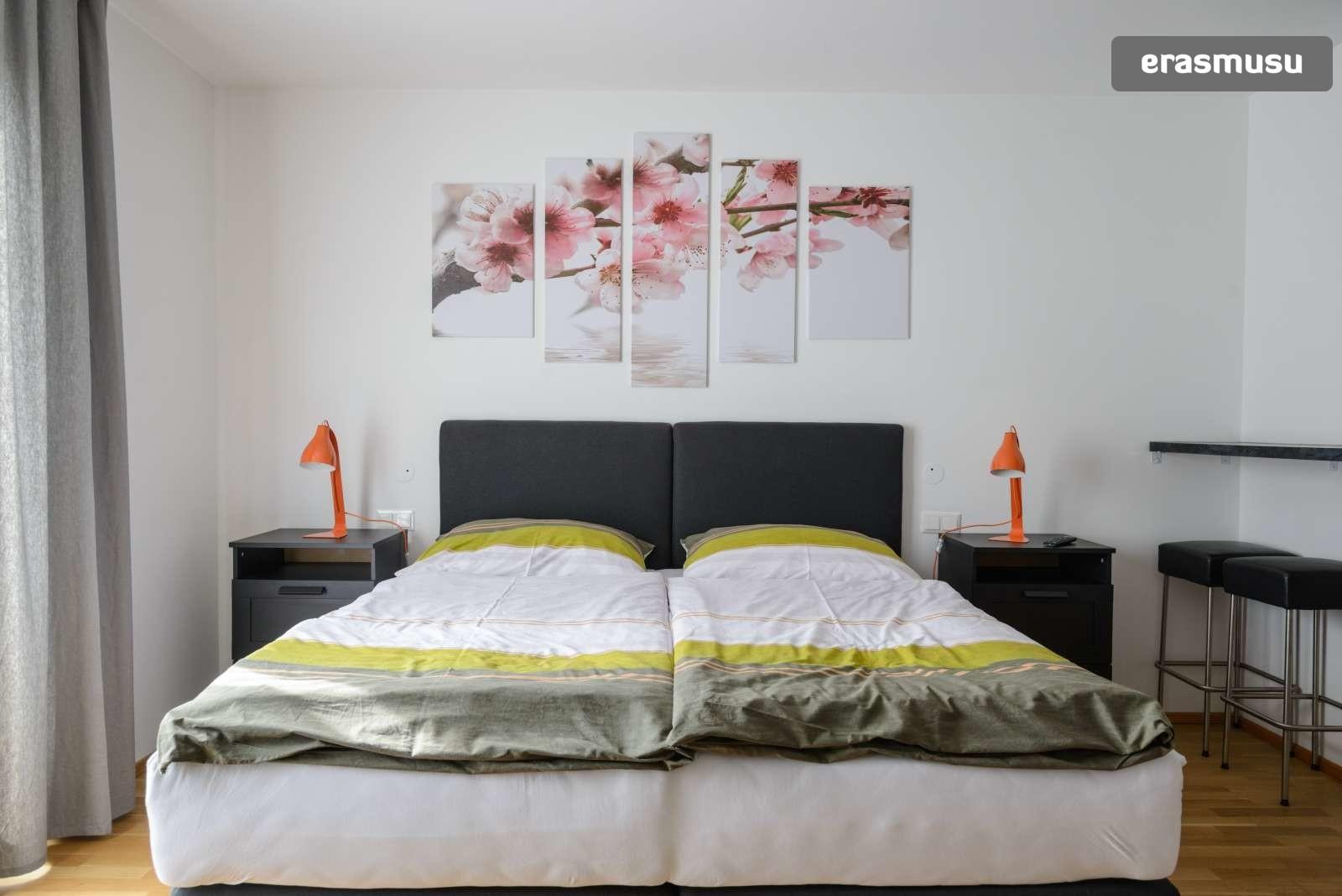 spacious-studio-apartment-rent-aspern-area-donaustadt-8716ec882d