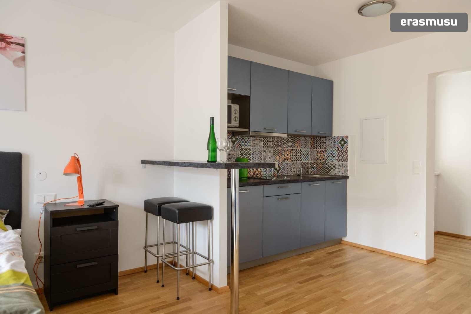 spacious-studio-apartment-rent-aspern-area-donaustadt-8b8f4c1c3e