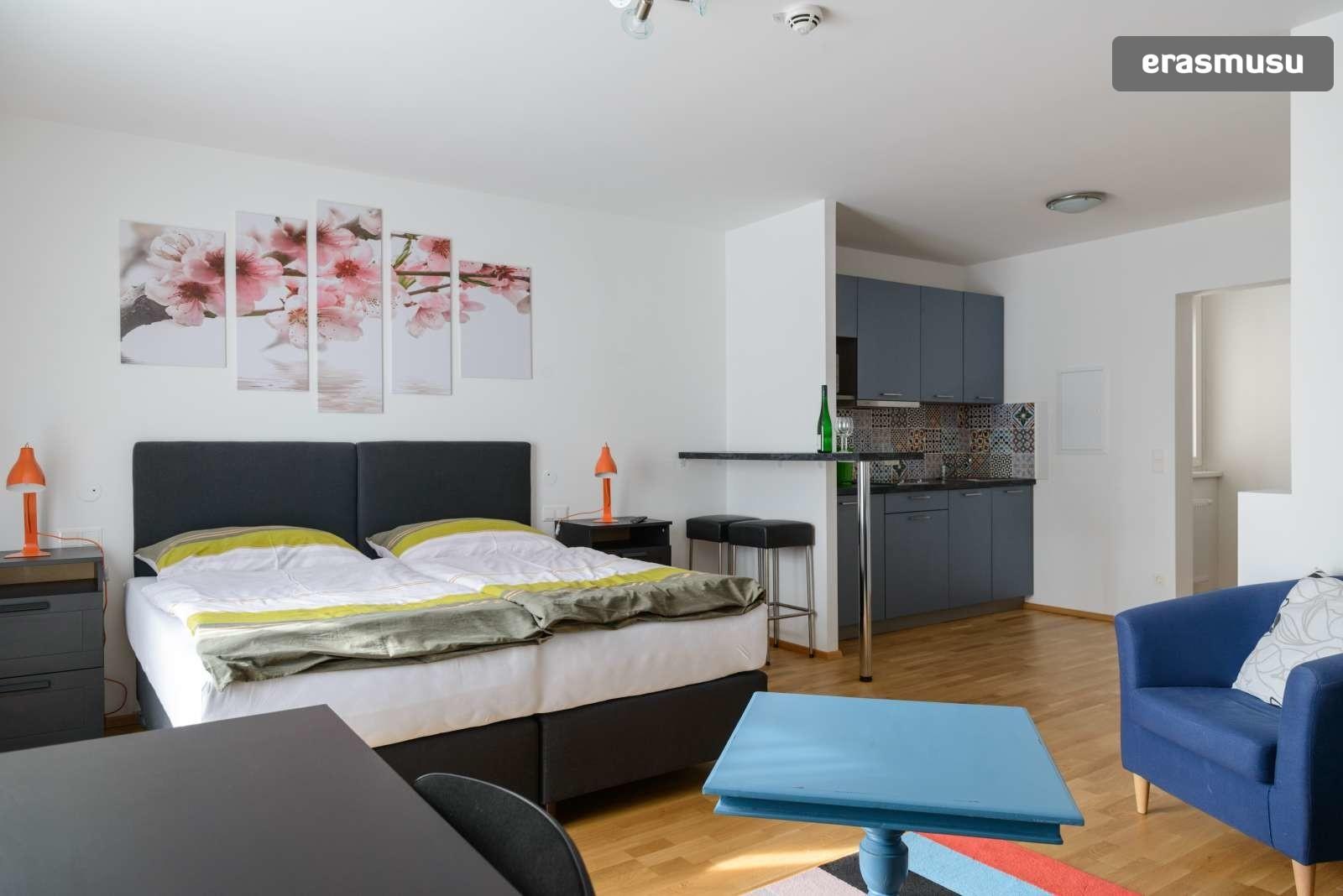 spacious-studio-apartment-rent-aspern-area-donaustadt-f84bb1fdb3