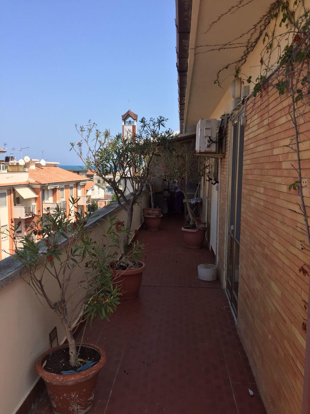Stanza singola MATRIMONIALE in appartamento con altre stanze