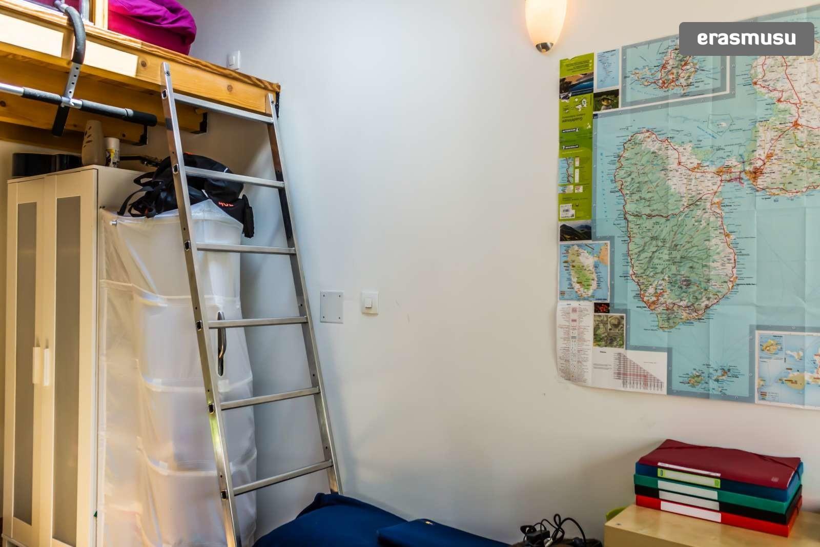 Studio apartment with mezzanine for rent in Parilly | Rent studios Lyon