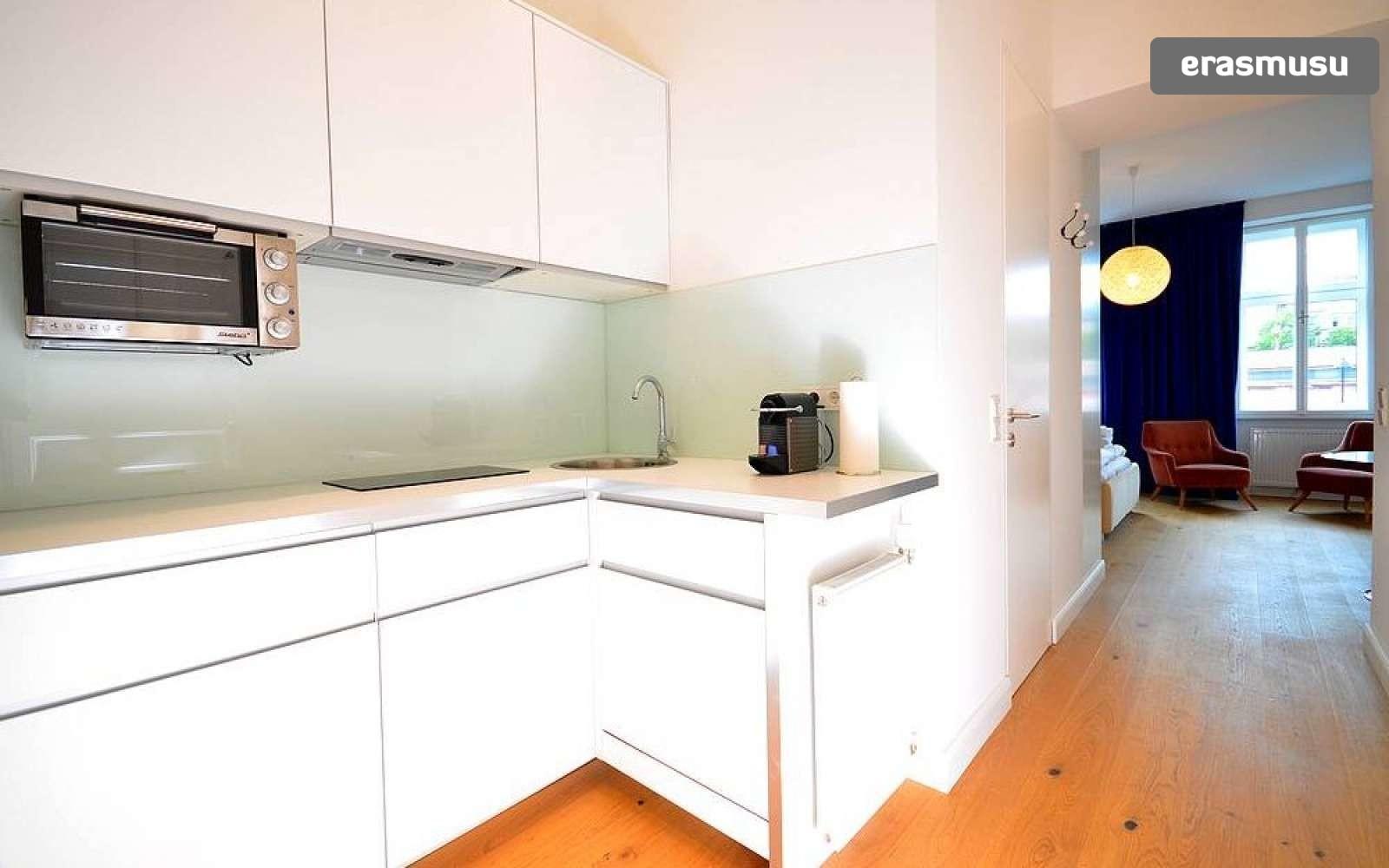 studio-apartment-rent-rudolfsheim-funfhaus-560cbdc23a8a60ff25165