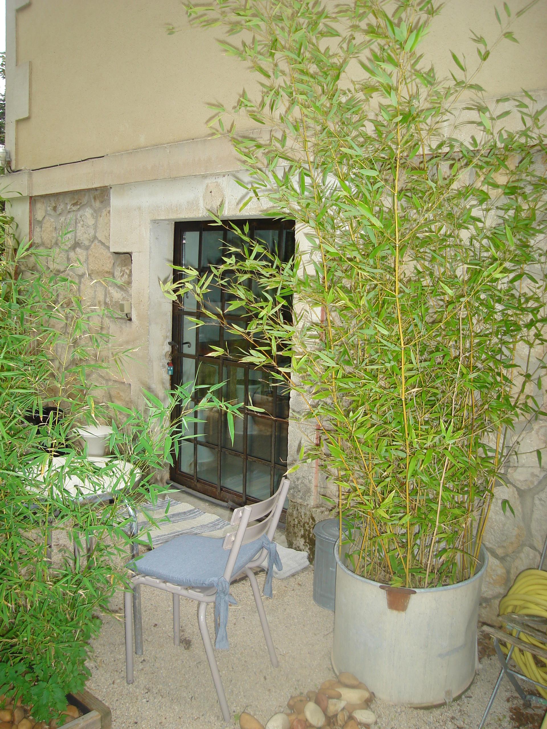 studio en rez de jardin