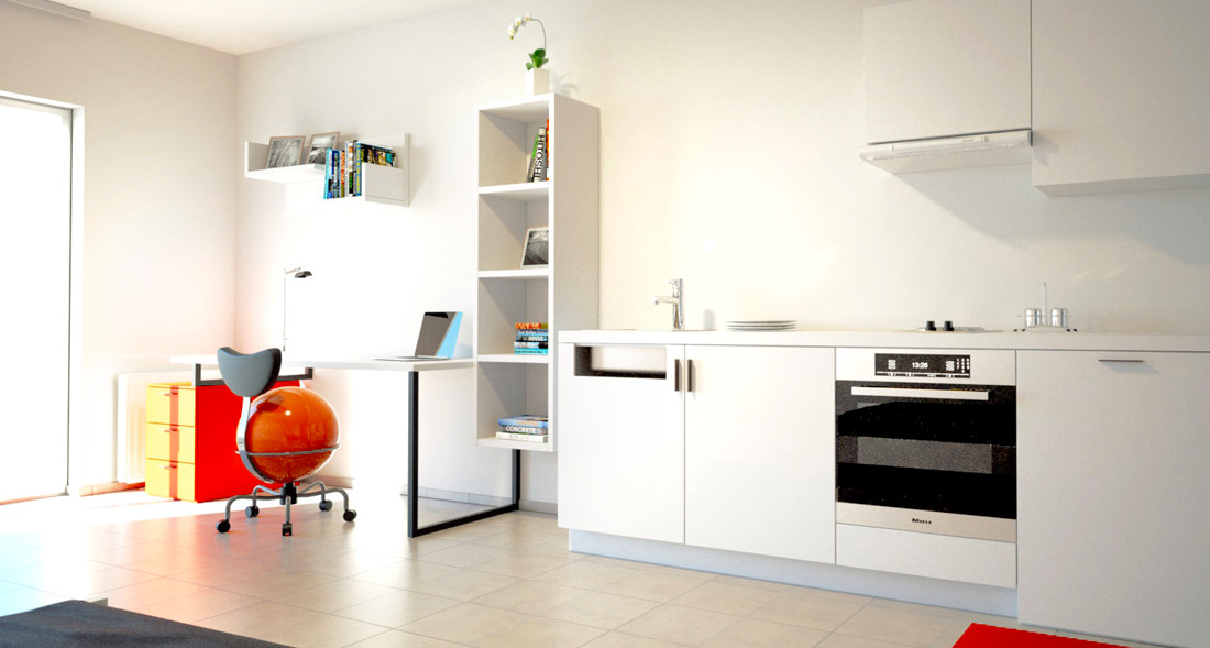 Studios with private bathroom, private kitchen and private skyli