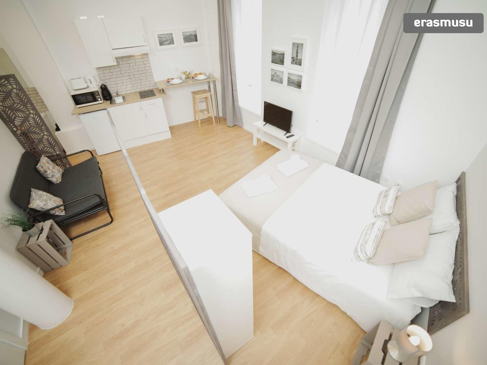 stunning-studio-apartment-rent-santo-ildefonso-28800f3b136b02e9d