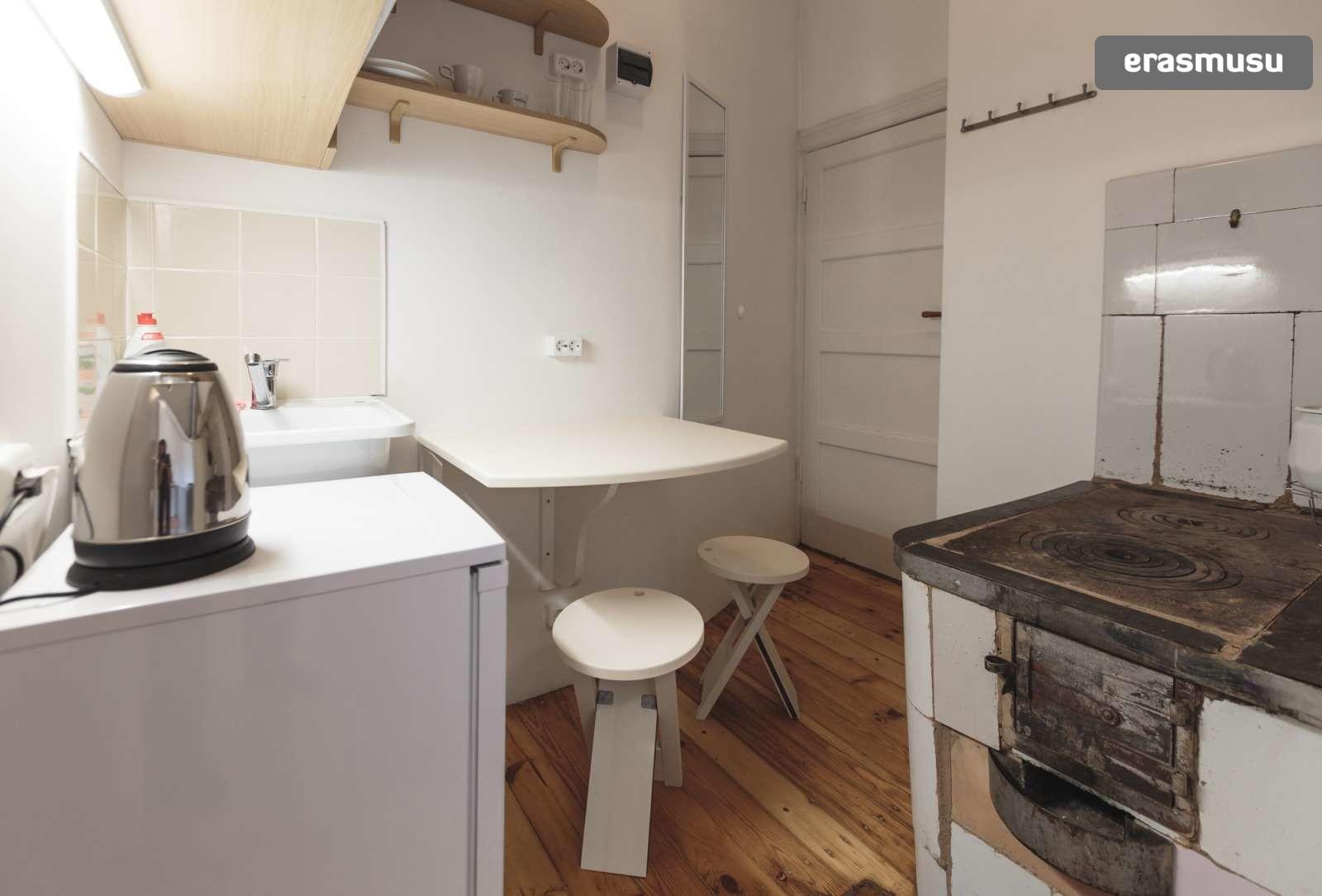 stylish-studio-apartment-rent-agenskalns-pet-friendly-2782005bae