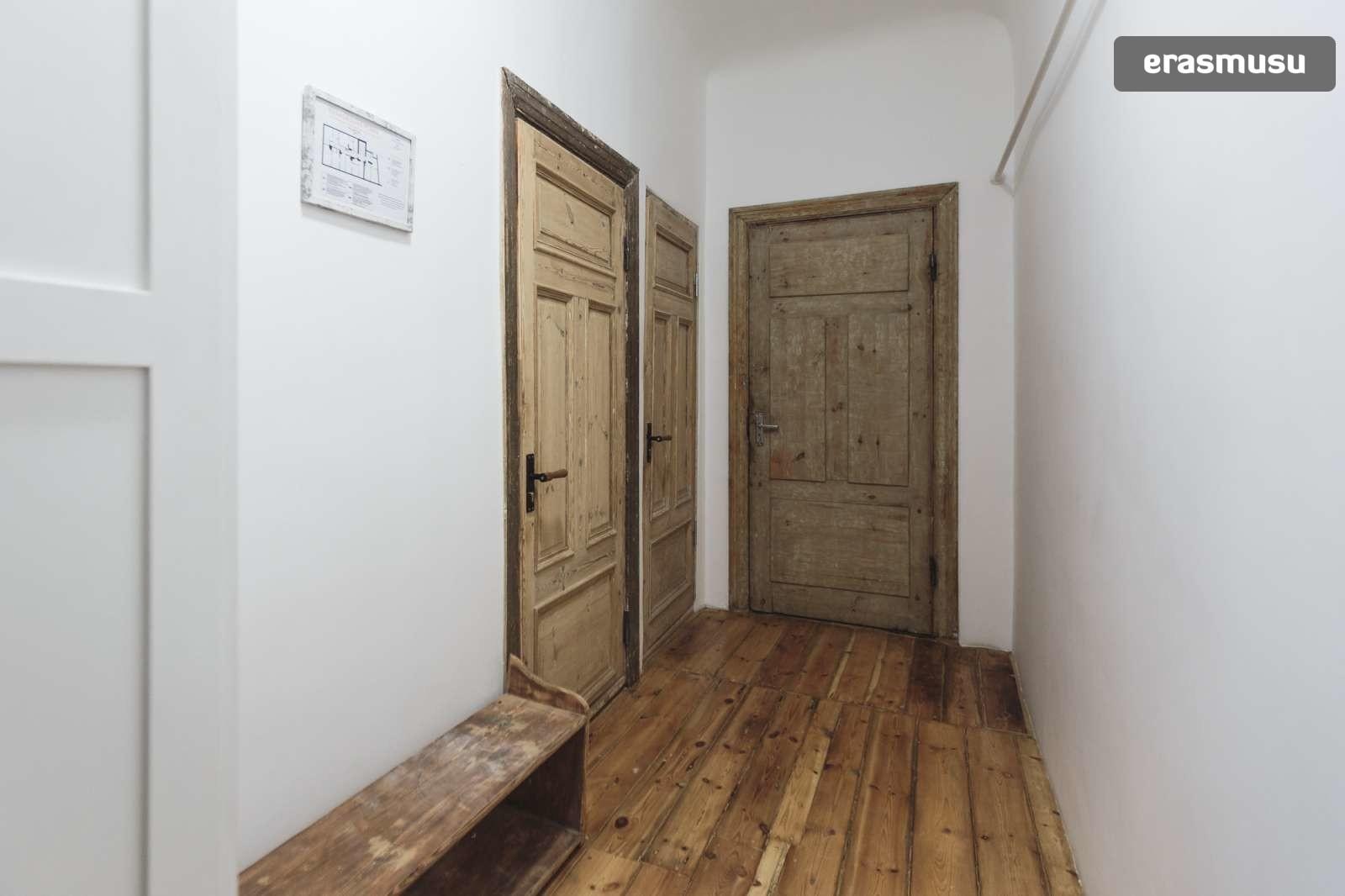 stylish-studio-apartment-rent-agenskalns-pet-friendly-68687cae3c
