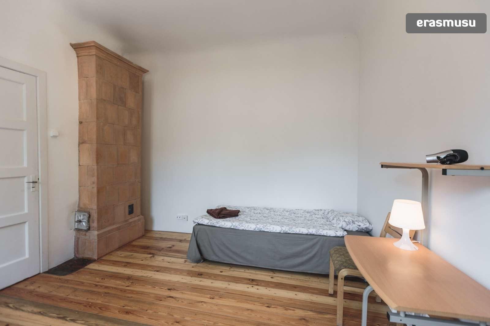 stylish-studio-apartment-rent-agenskalns-pet-friendly-798c1bd479