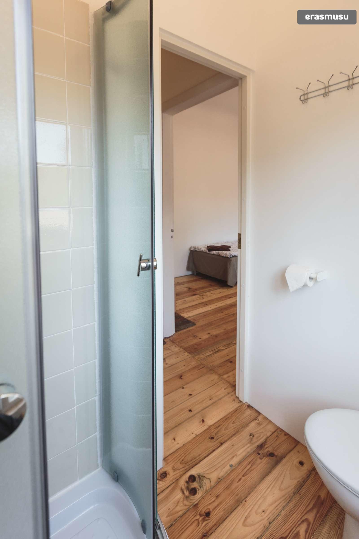 stylish-studio-apartment-rent-agenskalns-pet-friendly-b021dae441