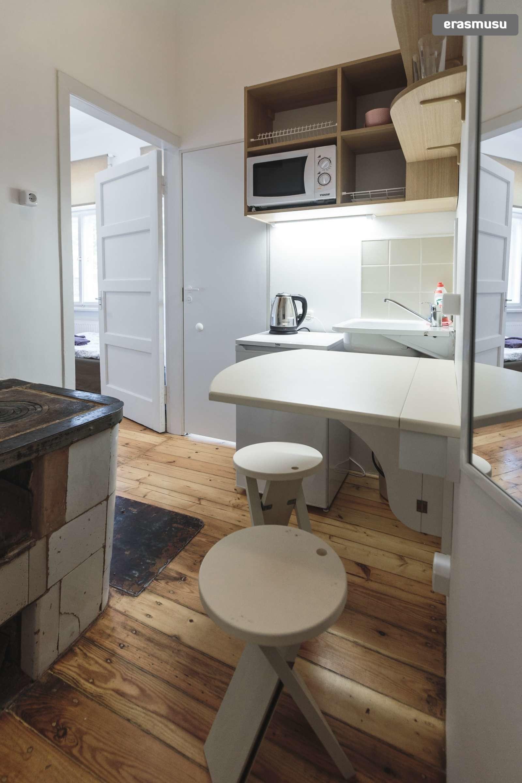 stylish-studio-apartment-rent-agenskalns-pet-friendly-d926202d73