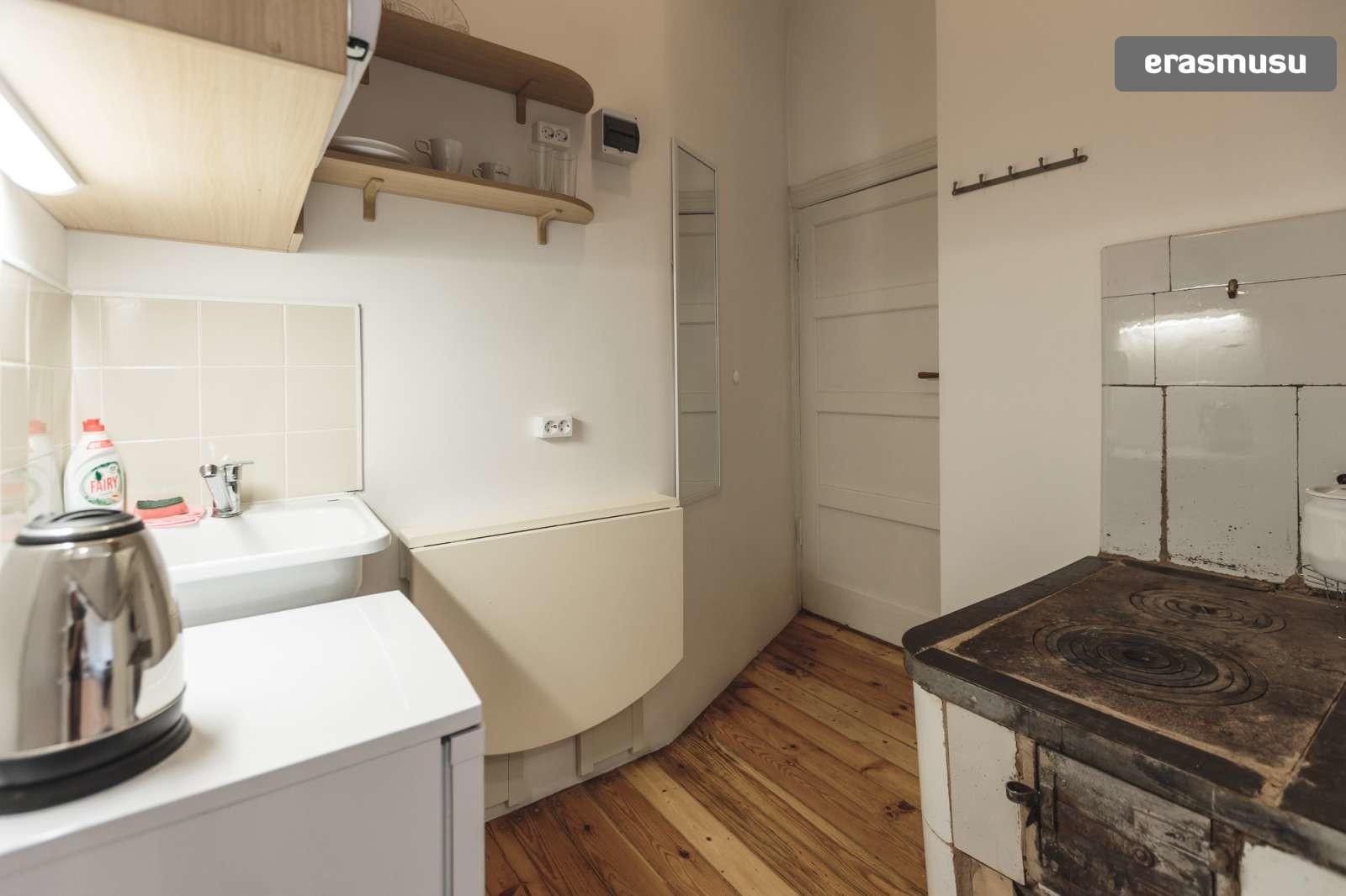 stylish-studio-apartment-rent-agenskalns-pet-friendly-f28c7ca2ec