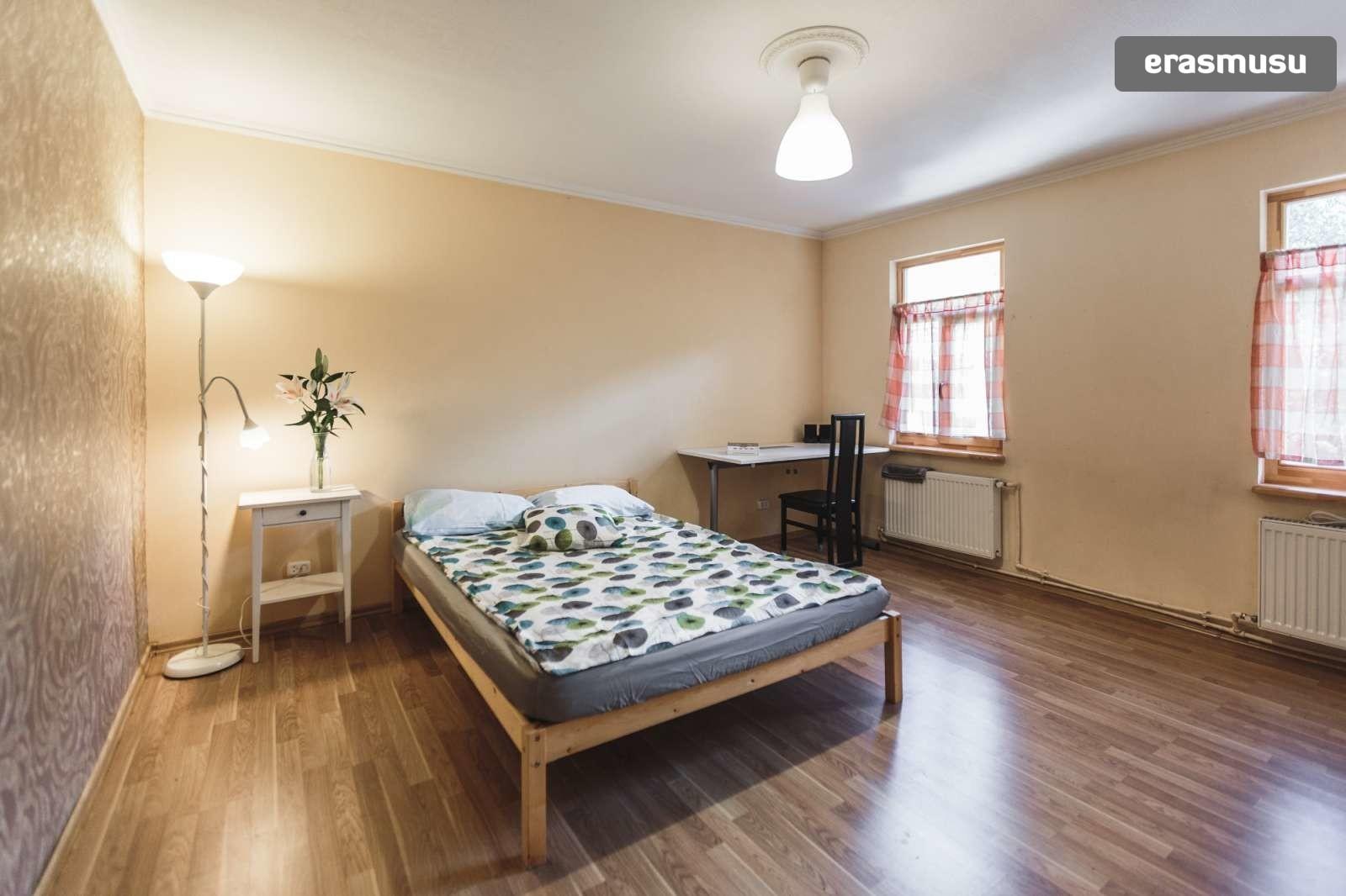 stylish-studio-apartment-rent-avoti-f7e5343ebb53f4ecff15f82d062e