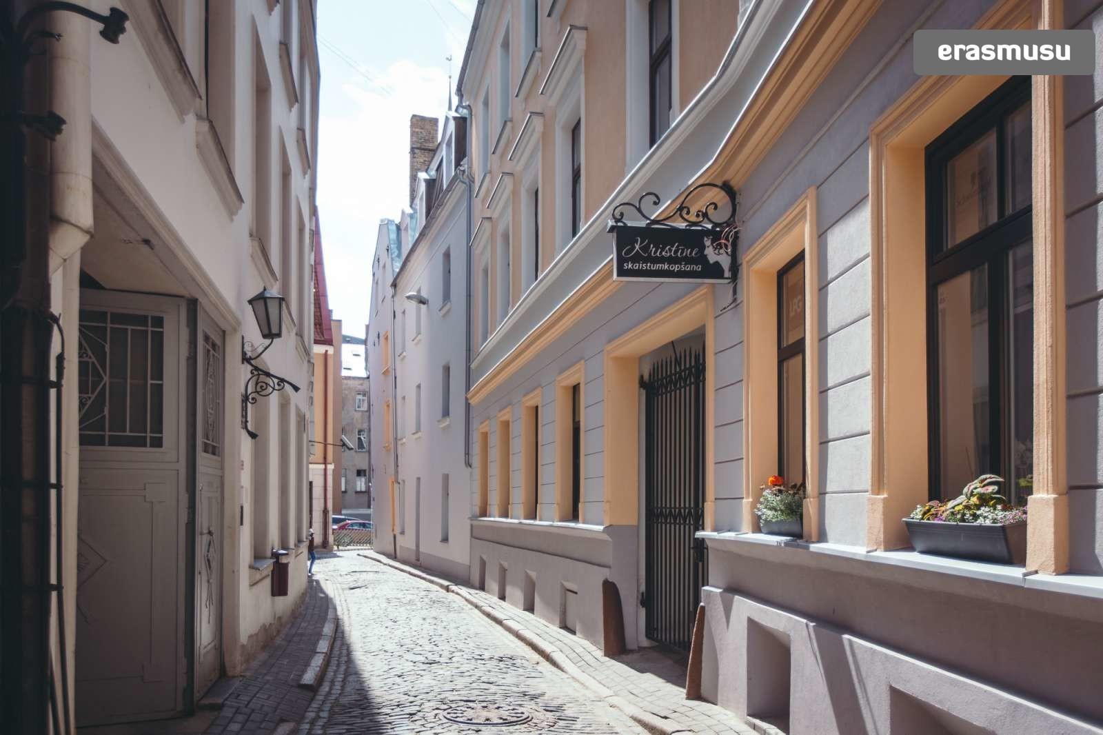 stylish-studio-apartment-rent-vecriga-2cd3889611d54a8a6fb2e766c8