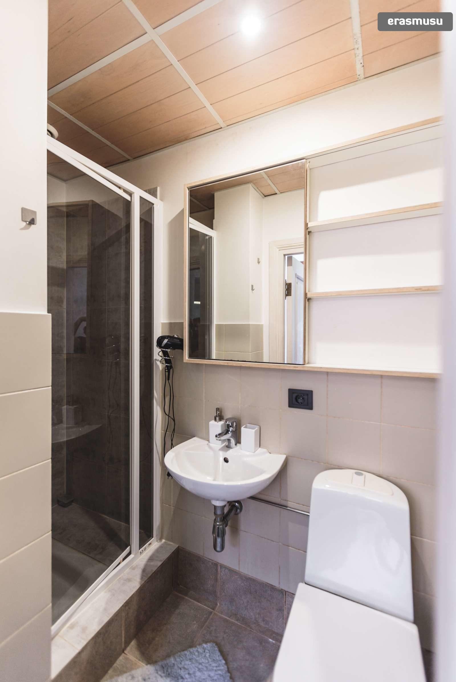 stylish-studio-apartment-rent-vecriga-48323b51f0df3e99fc4929e92d