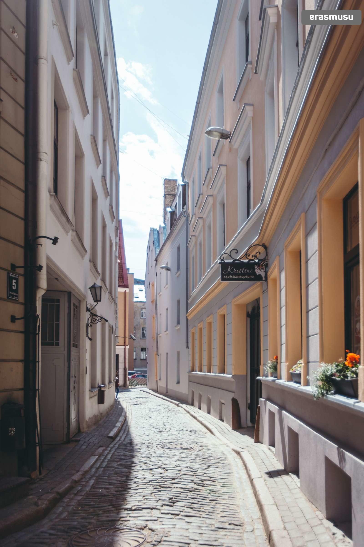 stylish-studio-apartment-rent-vecriga-b5a2fc7e807a6bfc5f9d26f350