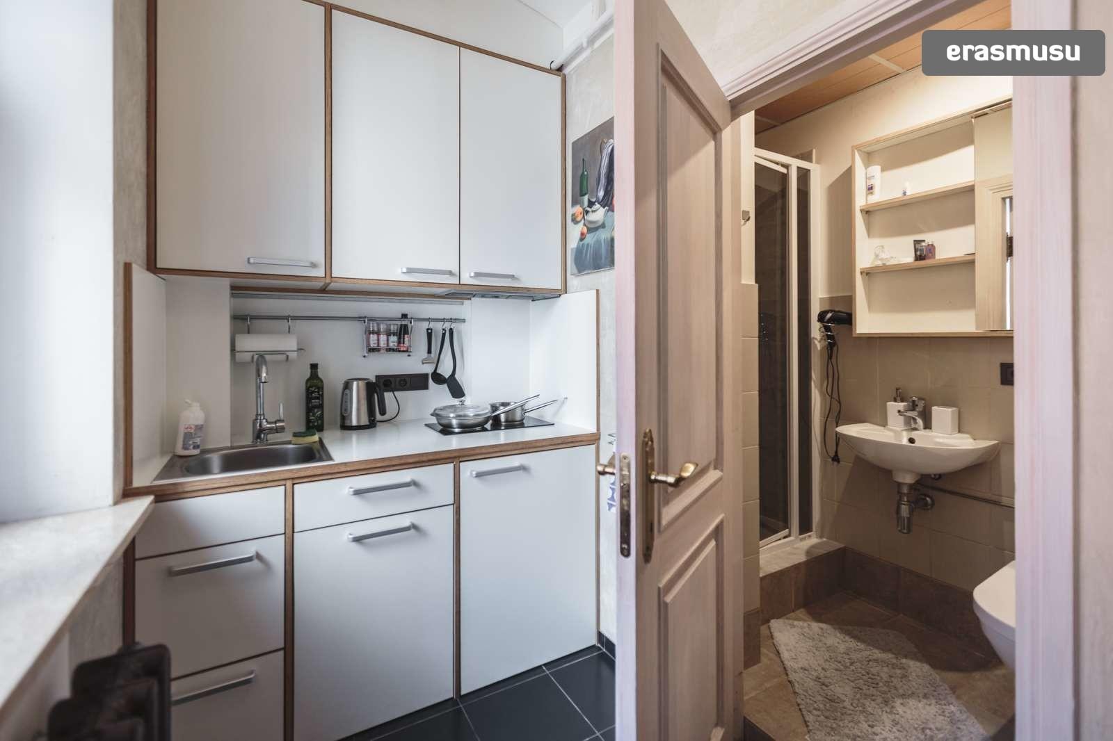 stylish-studio-apartment-rent-vecriga-ccd843882f8b4ae354da87f948