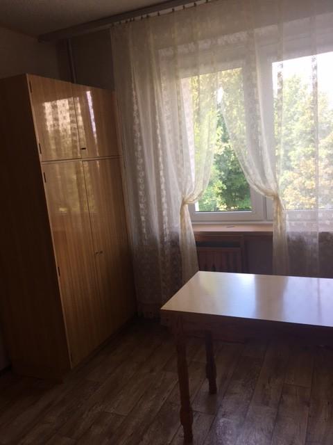 sunny-flat-rent-lodz-piso-para-alquilar-en-lodz-muy-bien-situado-c3b3372b196b0e46e43d56033f2197f6