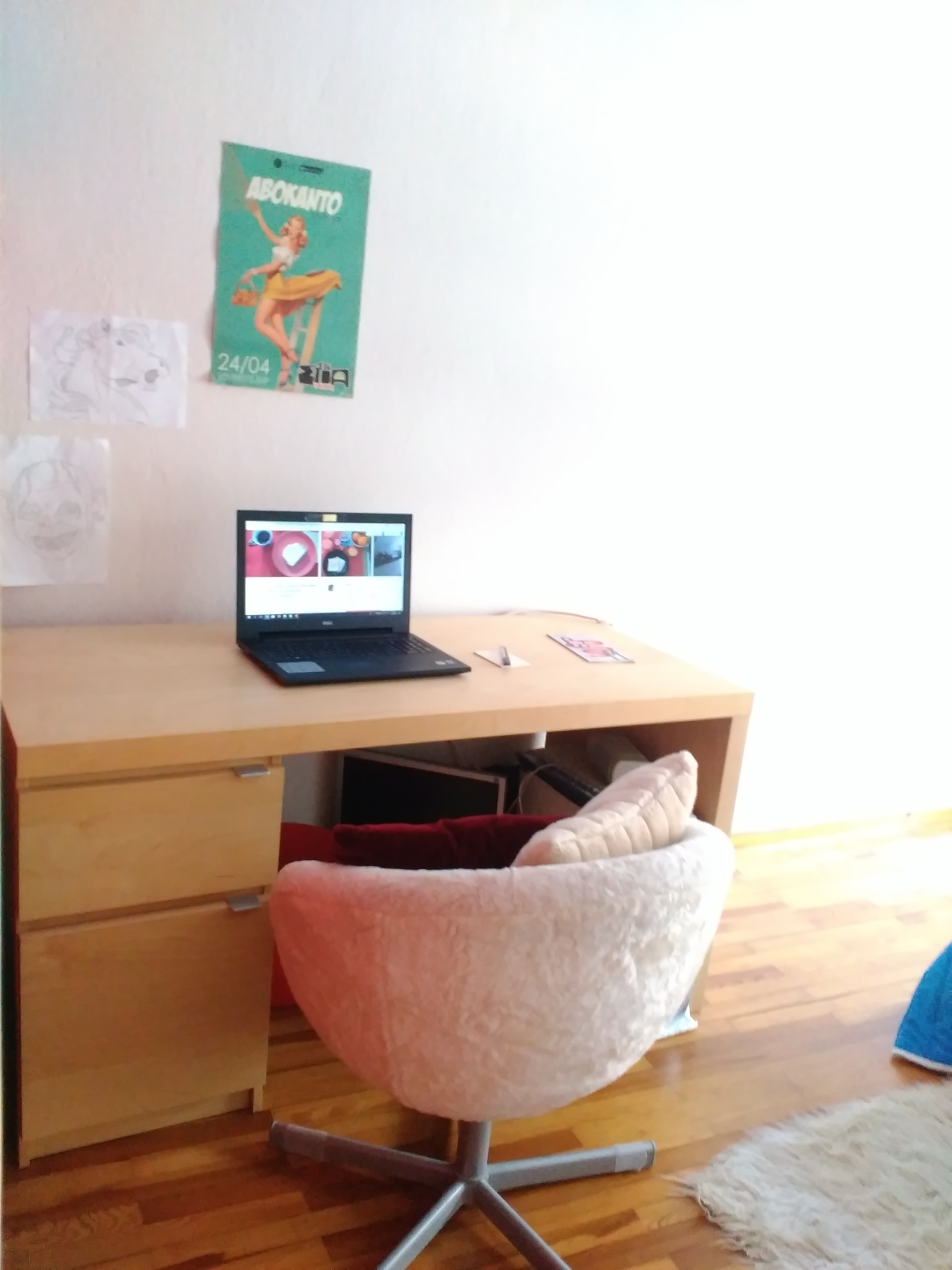 sunny-spacious-apartment-ideal-students-