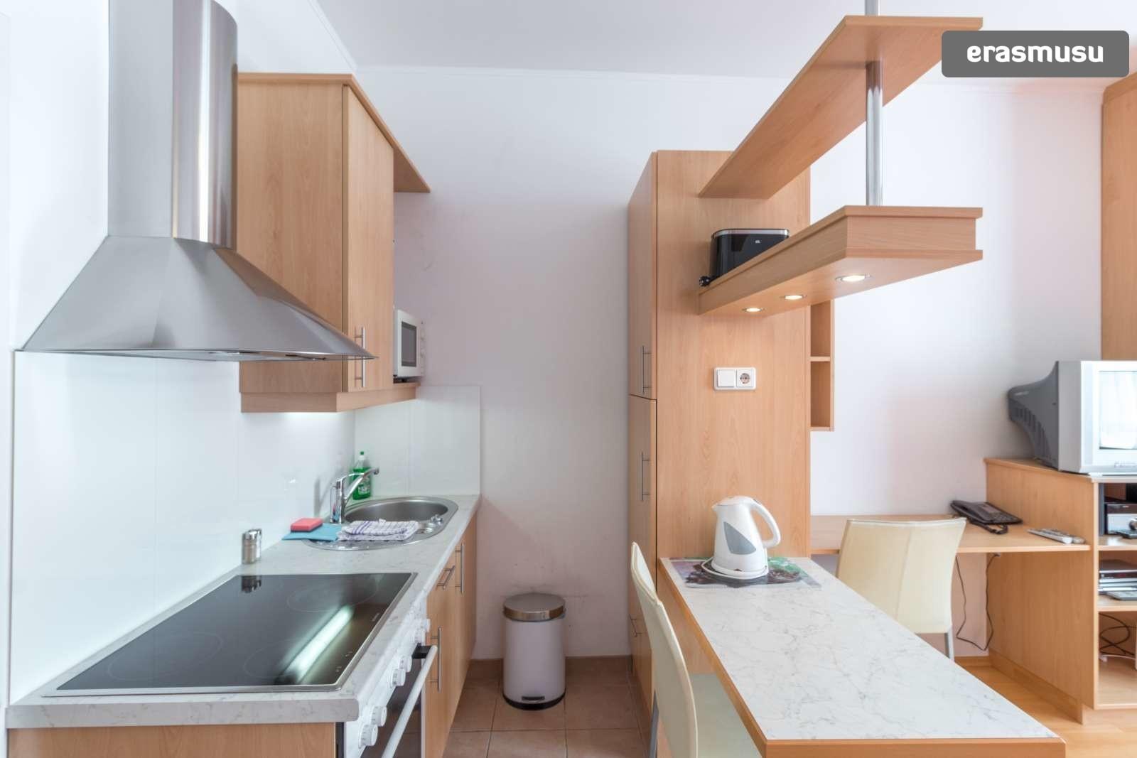 sunny-studio-apartment-rent-near-bohemian-prater-favoriten-42179