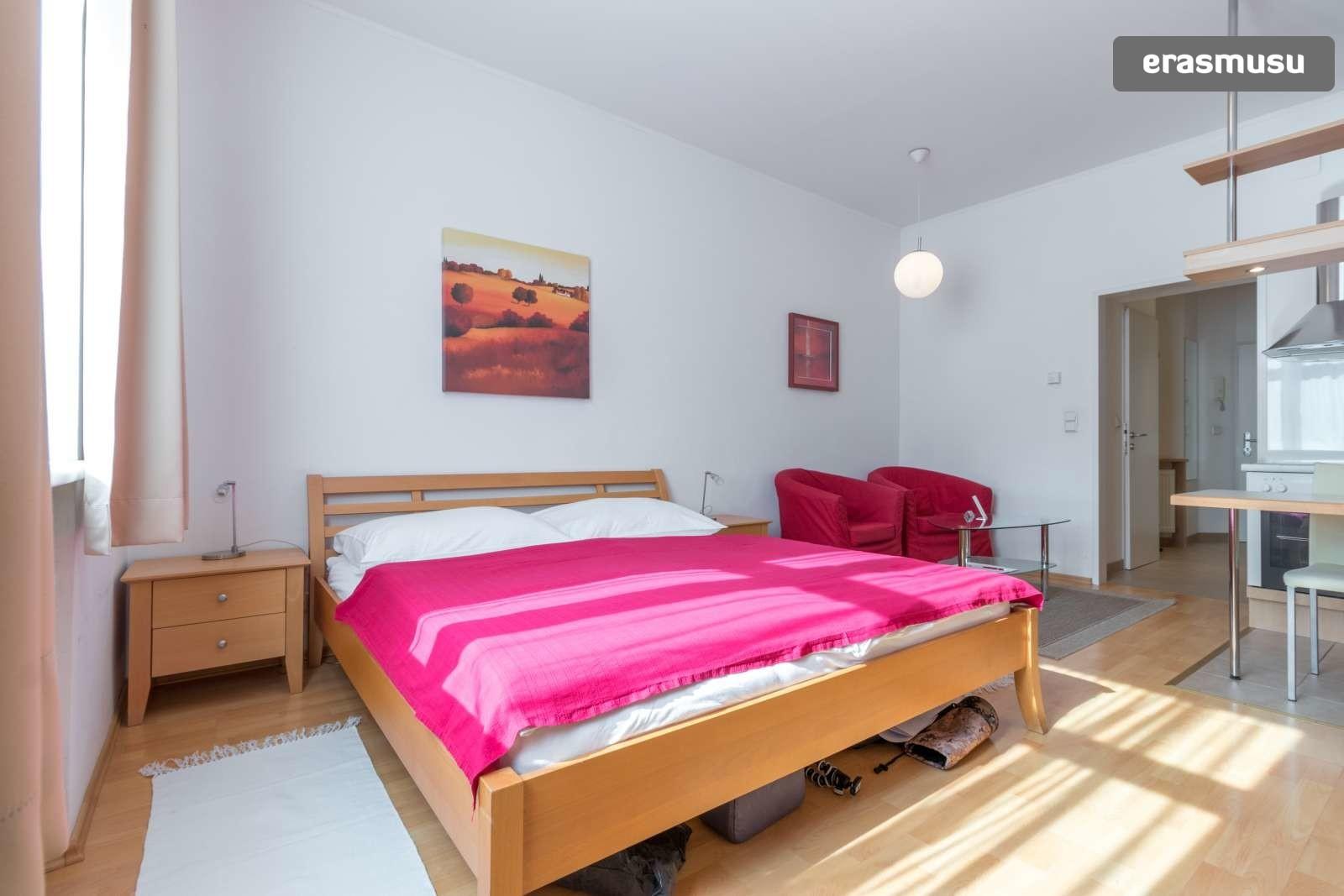 sunny-studio-apartment-rent-near-bohemian-prater-favoriten-5e7dc