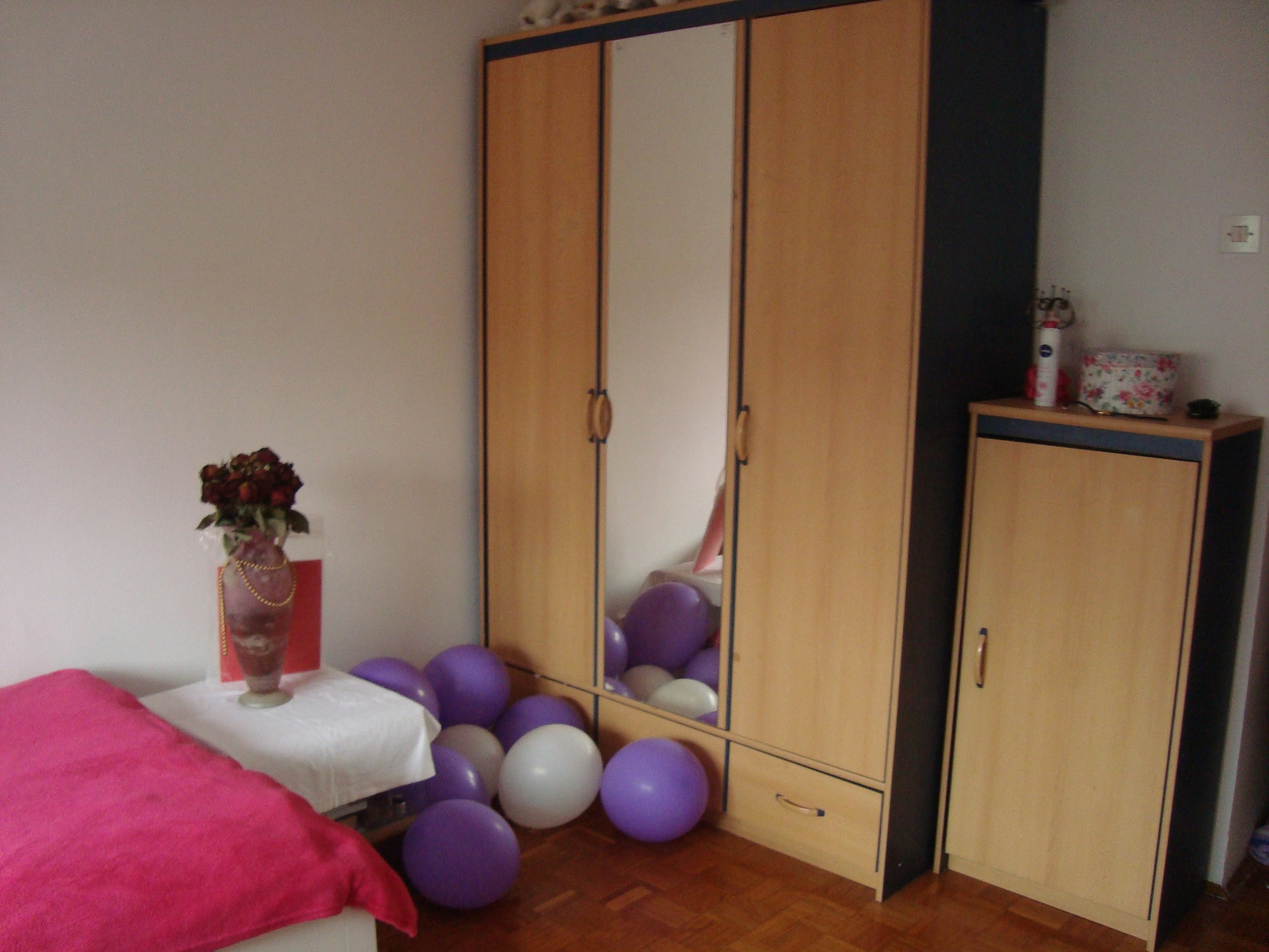 Sunny and sweet room in Zagreb, nearby lake Jarun