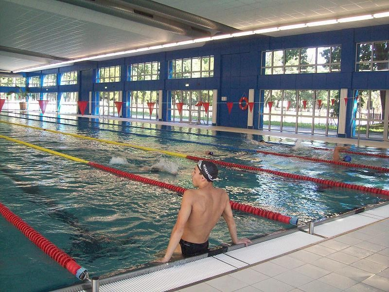 swimming-cluj-989865a995d61f173fc7c629ee