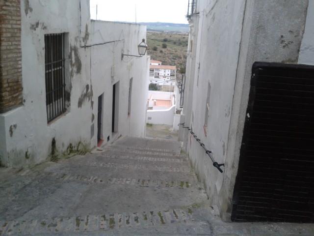 taberna-jovenes-flamencos-05bdd7bfda47b1