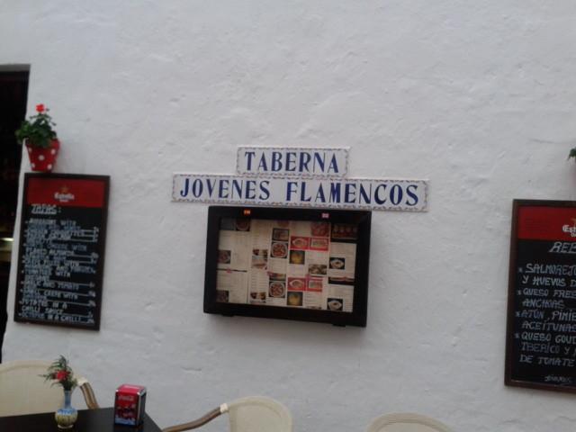 taberna-jovenes-flamencos-41ee1abafdbbf9