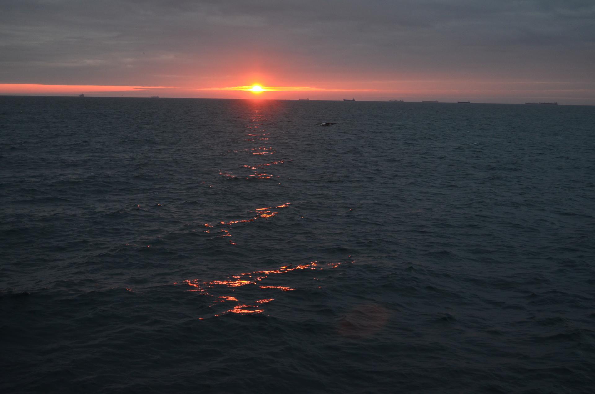 the-black-sea-winter-e856dcaa0e1bb934717