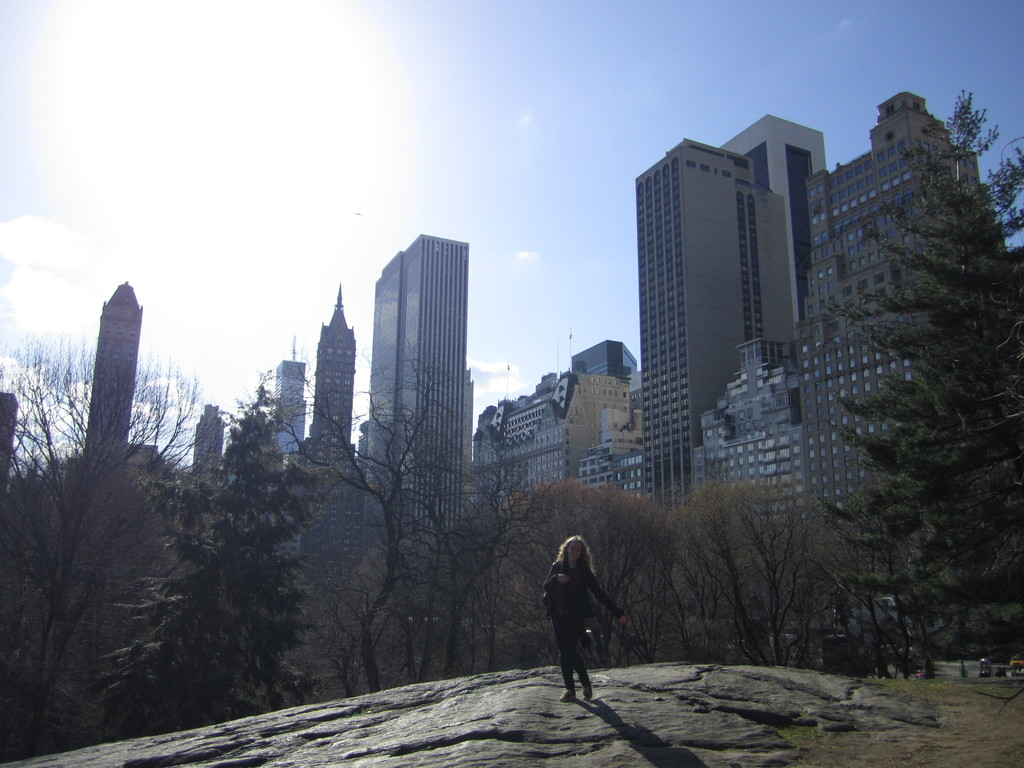 the-new-york-central-park-54ee104e017e3b