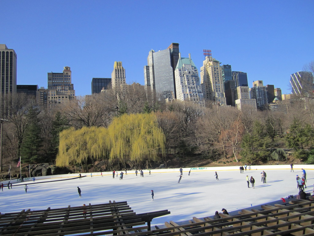 the-new-york-central-park-817789b9bc3bc6
