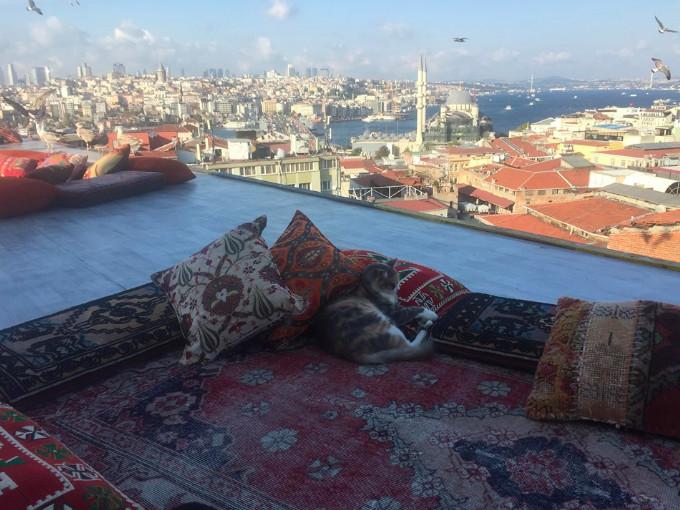 touring-turkey-part-4-second-day-istanbu