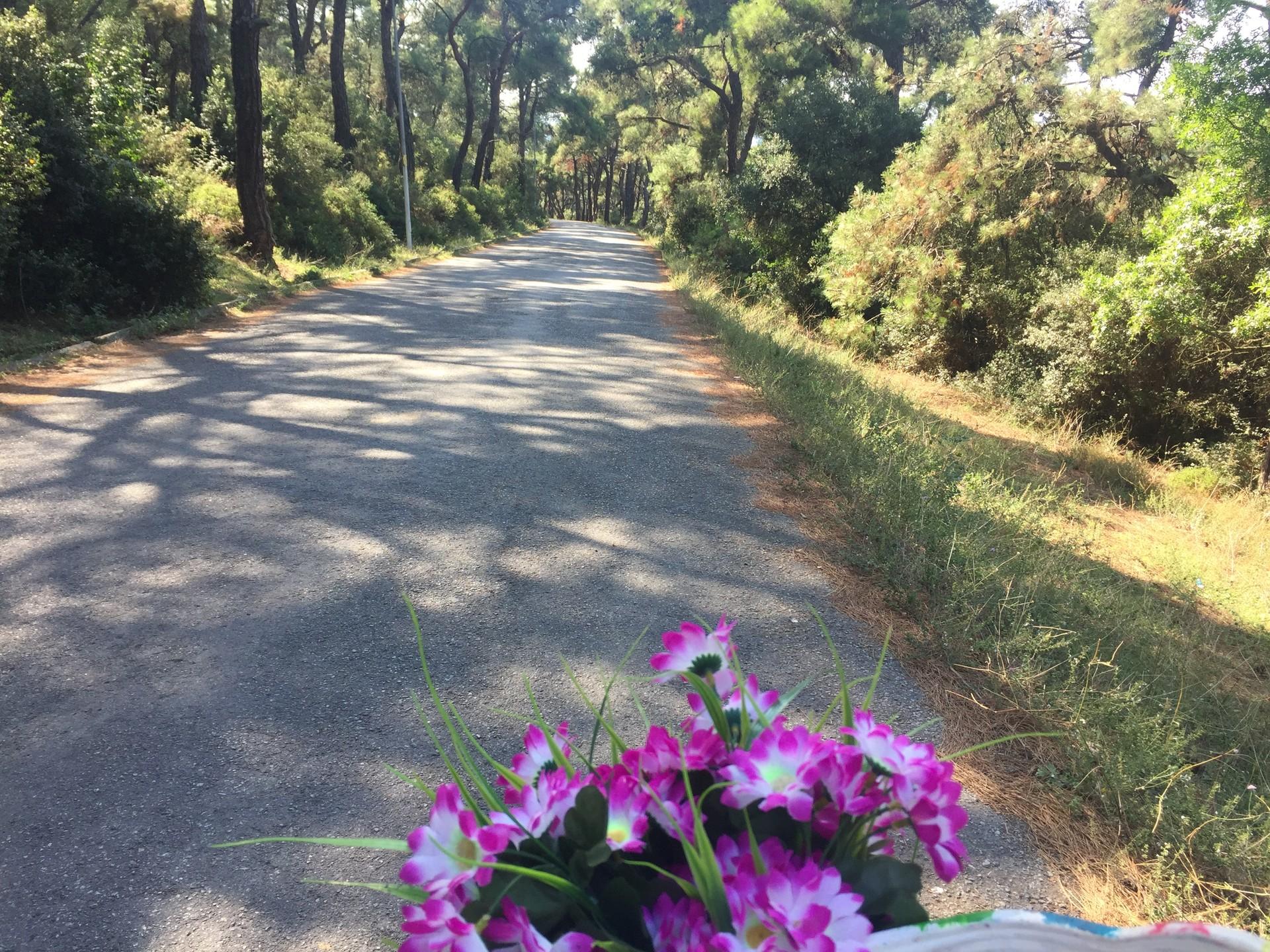 touring-turkey-part-7-biking-buyukada-1f