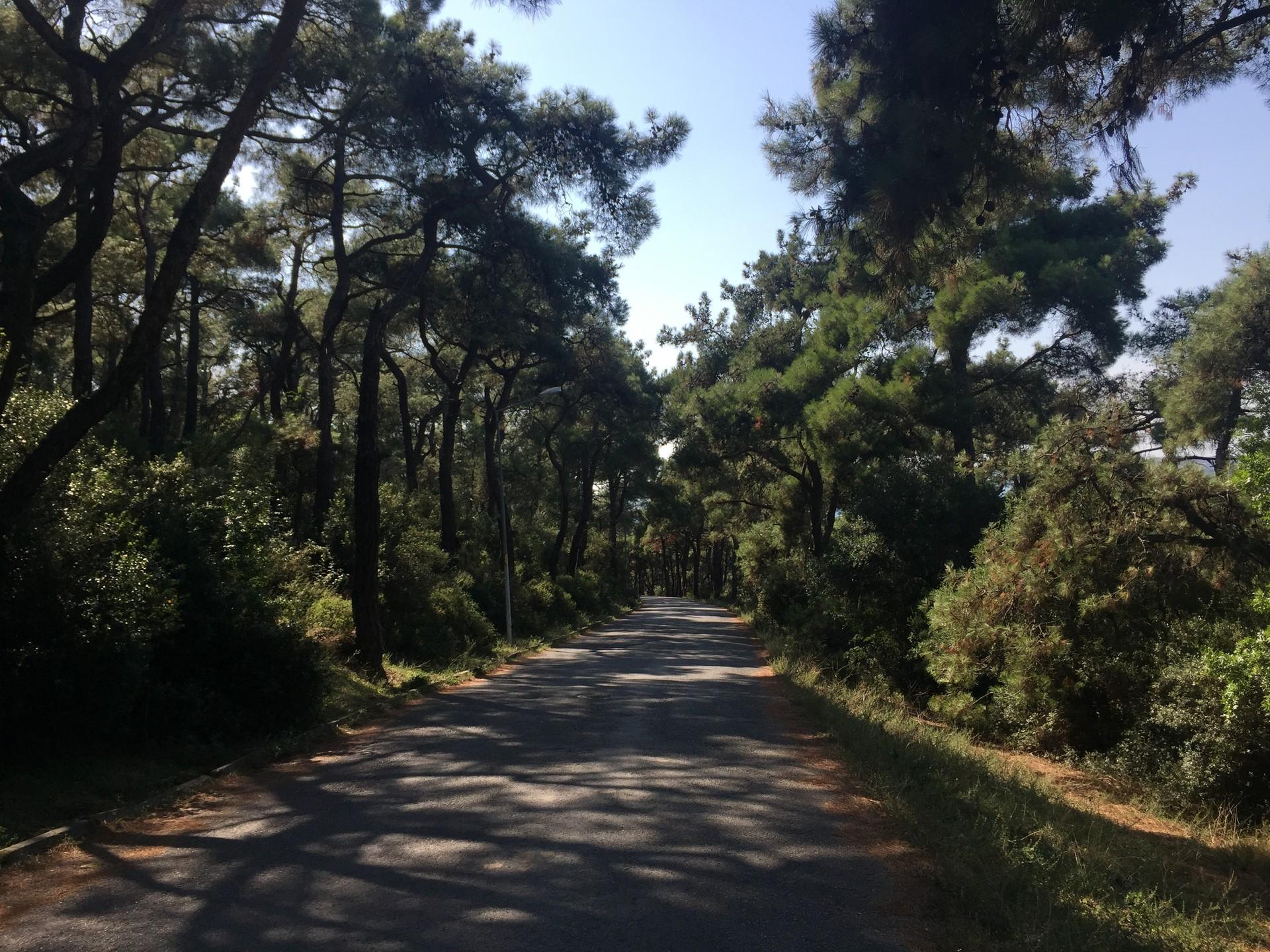 touring-turkey-part-7-biking-buyukada-3d