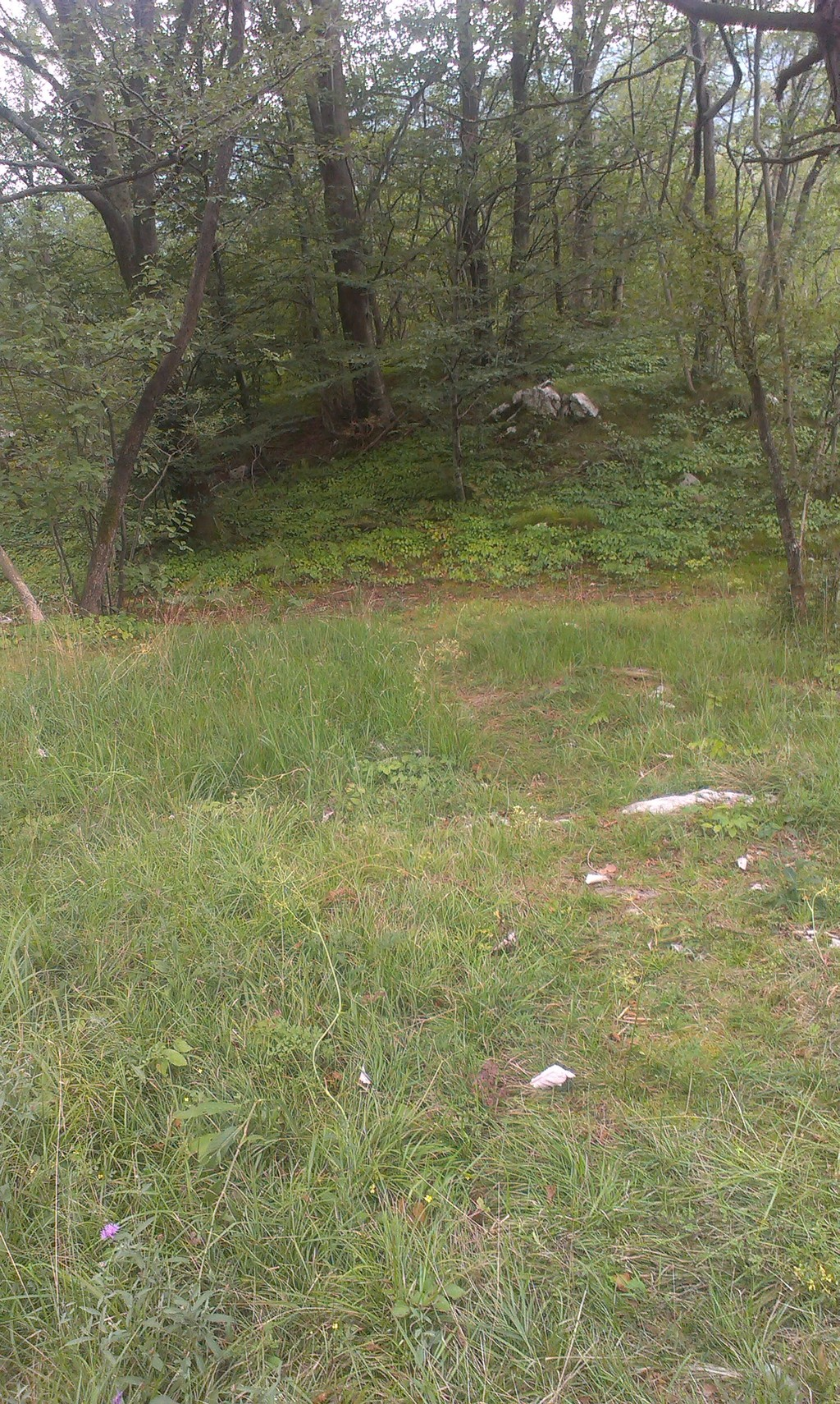 trail-star-views-d88379fe2d77c483e4fd881
